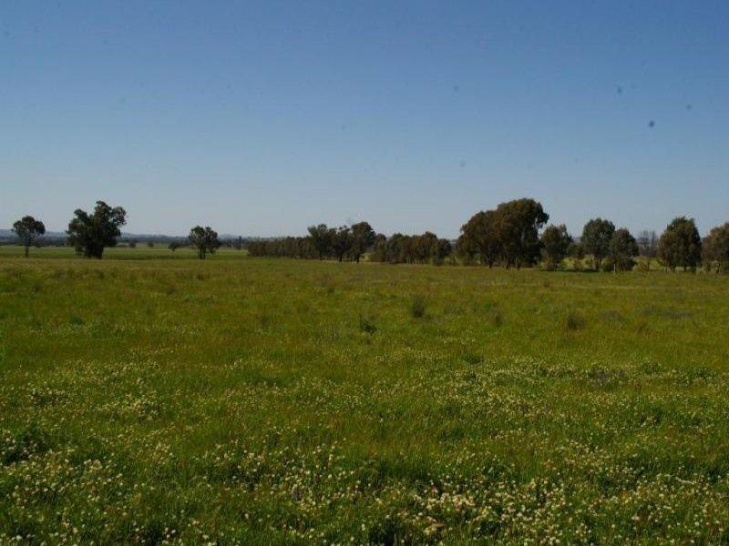 300 Jaricks Lane, Wagga Wagga, NSW 2650