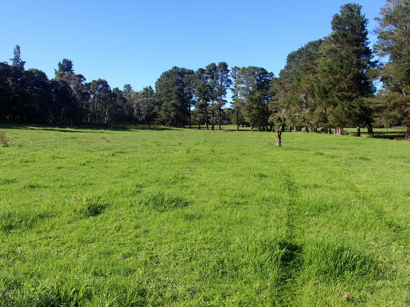 Lot 208, Caoura Road, Tallong, NSW 2579