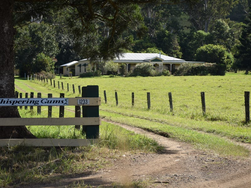 1233 Collins Creek Rd, Collins Creek, NSW 2474