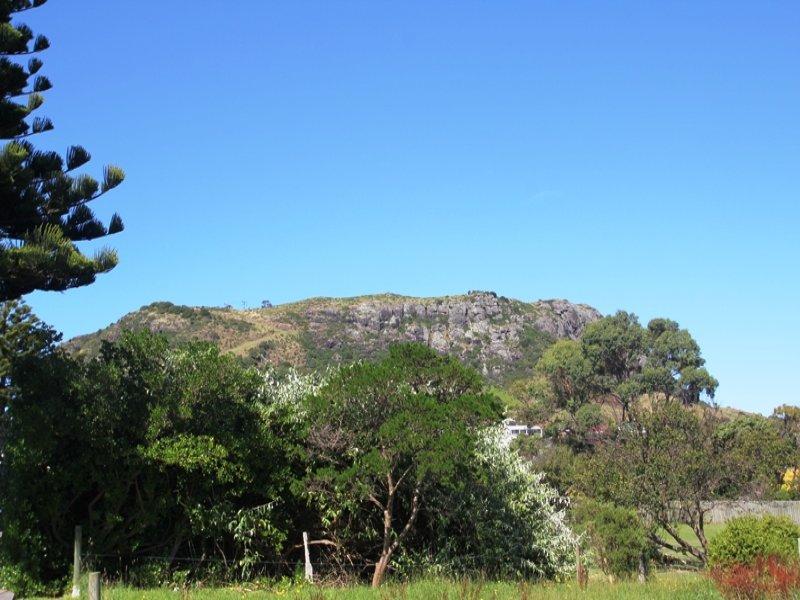 14 Main Road, Stanley, Tas 7331