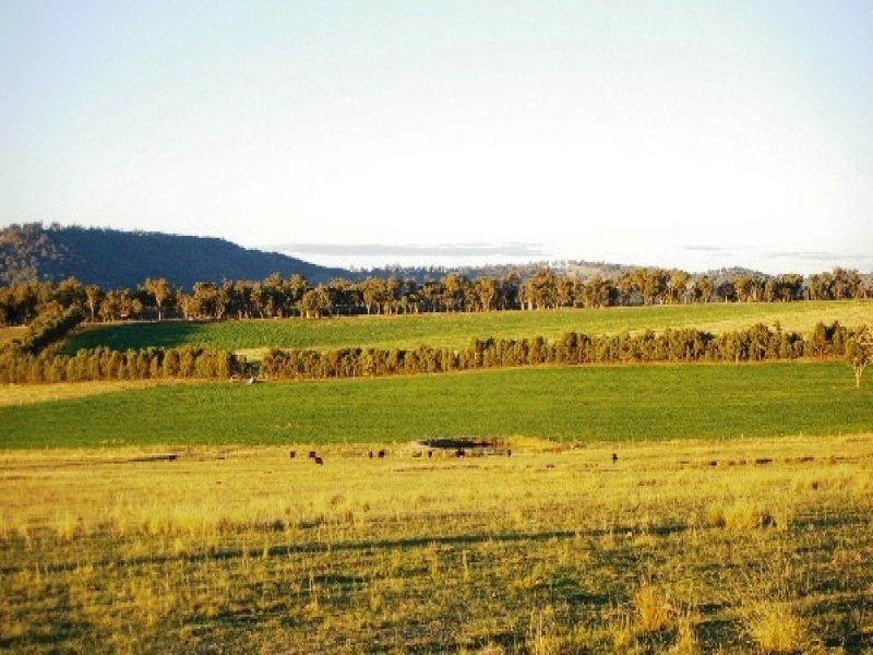 Top Lands Back Woolbrook Road, Woolbrook, NSW 2354
