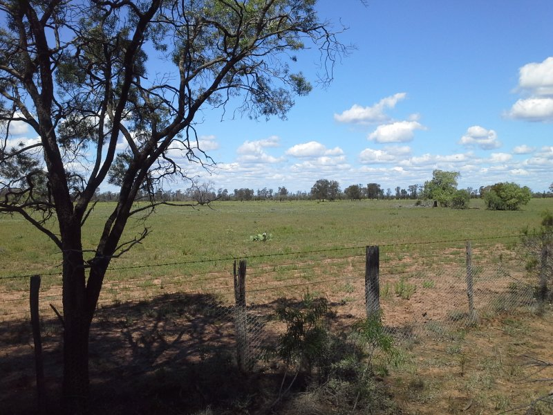 HD Creek Rd, Pilliga, NSW 2388
