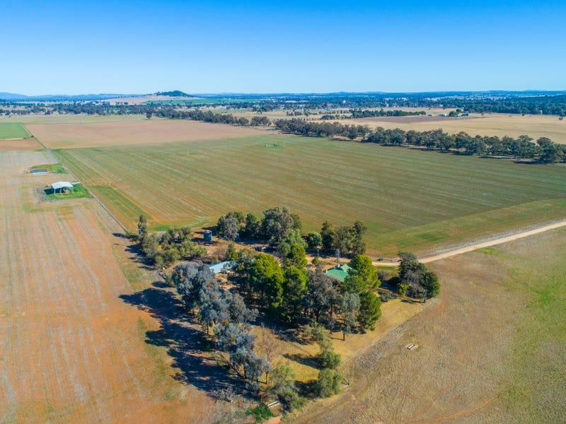 165 Pengillys Lane, Eugowra, NSW 2806