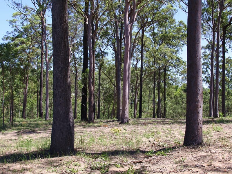 Lot 54, Arborten Rd, Glenwood, Qld 4570