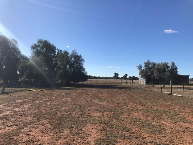 26 Eurimbla Road, Cumnock, NSW 2867