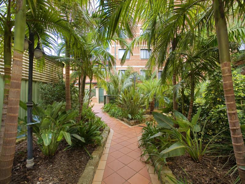 43/187 CLEVELAND STREET, Redfern, NSW 2016