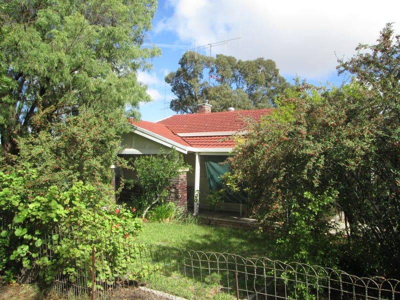 17 Pethick Street, Pinnaroo, SA 5304
