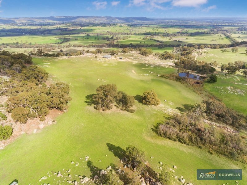 667 Creightons Creek road, Creightons Creek, Vic 3666