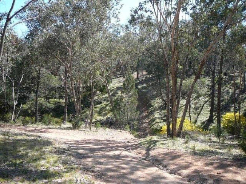 Lot 19 Carinya Road, Boorowa, NSW 2586