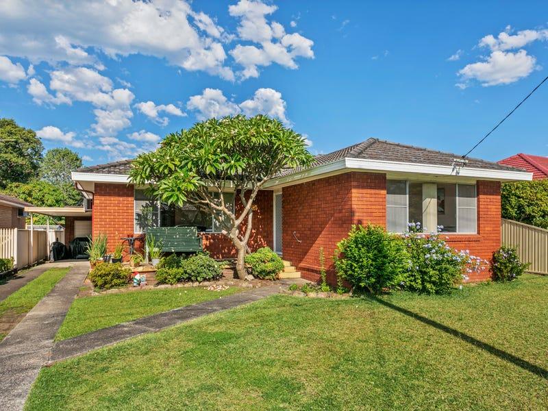23 St Luke's Avenue, Brownsville, NSW 2530