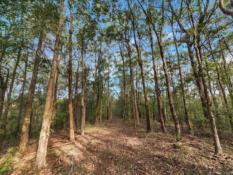 132 Budd Road, Cedar Creek, NSW 2325