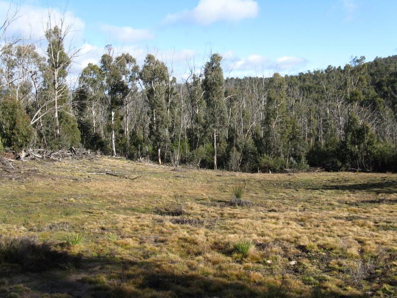 1186 Great Alpine Road Via Omeo, Cobungra, Vic 3898