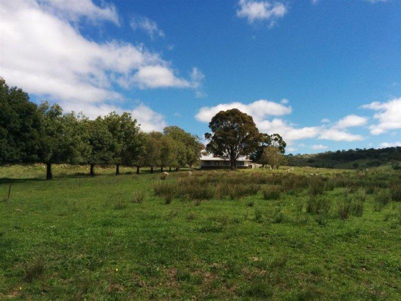 590 Athol Road, 'East Lynne', Uralla, NSW 2358