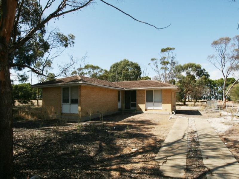 Lot 1 School Terrace, Paskeville, SA 5552