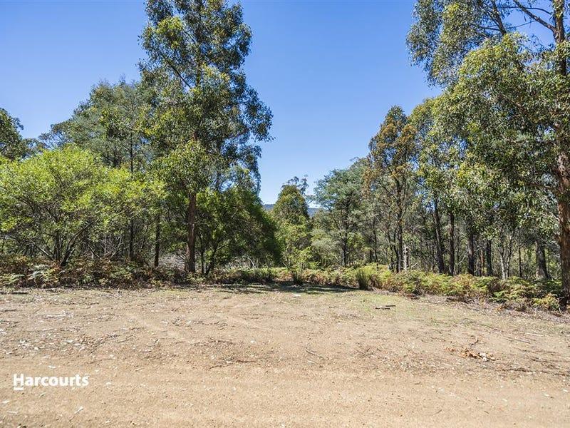Lot 1 Fyfes Road, Mountain River, Tas 7109