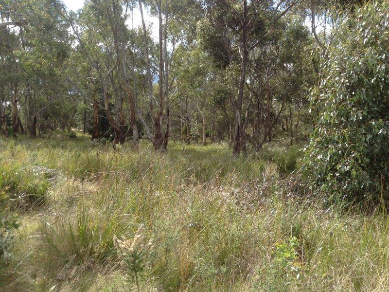 15 Matthew Flinders Drive Alonnah, Alonnah, Tas 7150
