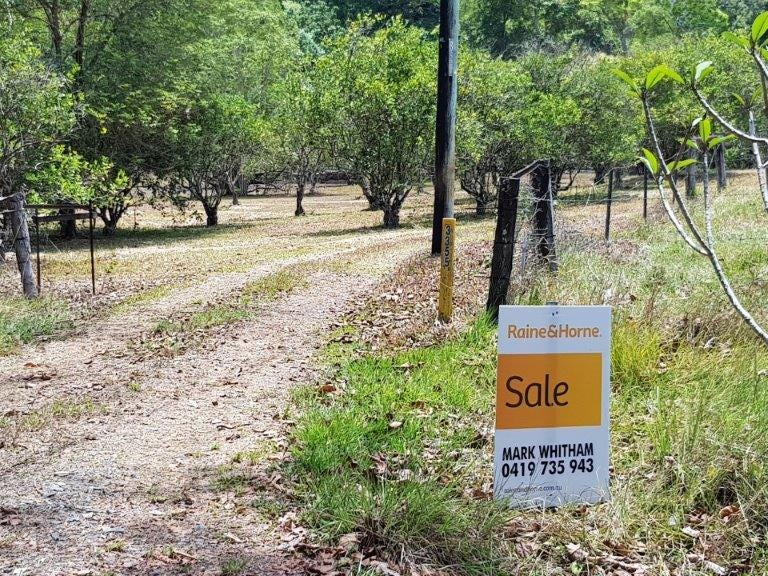 3355 Mossman Daintree Road (Little Yungaburra), Daintree, Qld 4873