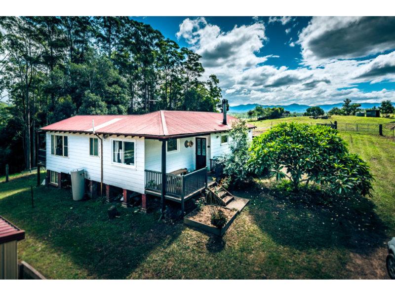 98 sunny corner Road, Bellingen, NSW 2454
