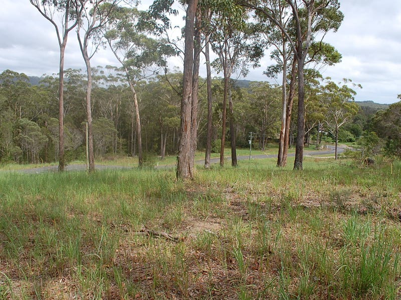 Lot 2,3&4, DP1122738 Scotts Head Road, Scotts Head, NSW 2447