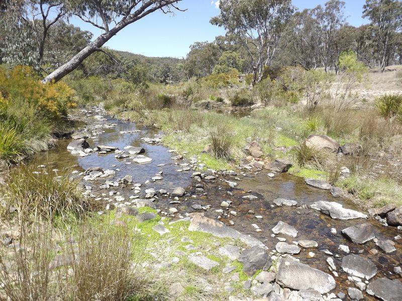 3, Billabong Waters, Emmaville, NSW 2371