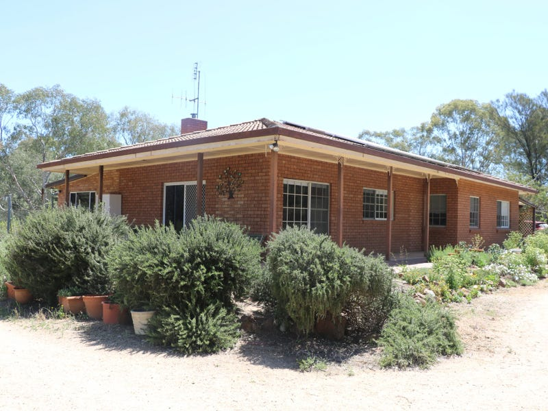 64 TERRILL ROAD, Parkes, NSW 2870
