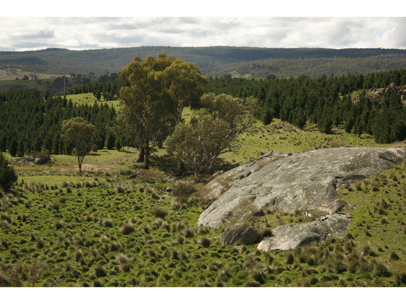 Lot 17/PC1, Peak View Road, Peak View, NSW 2630