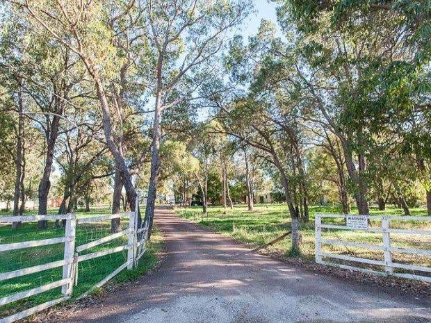 64 Kelvin Road, Wattle Grove