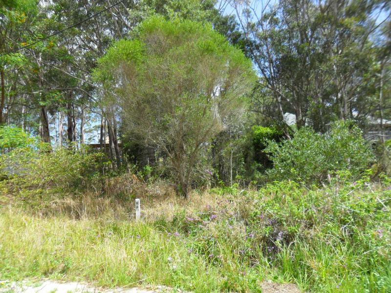 14 Bellman Ave, Elizabeth Beach, NSW 2428