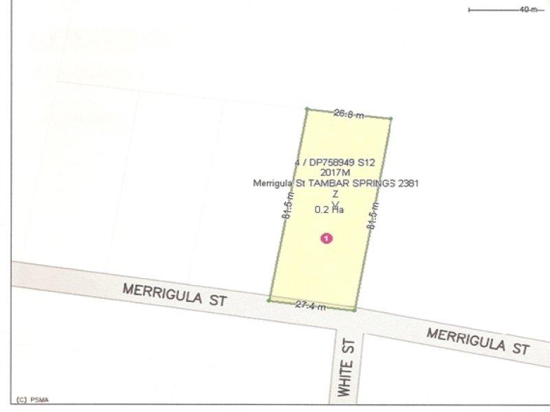 Merrigula St, Tambar Springs, NSW 2381