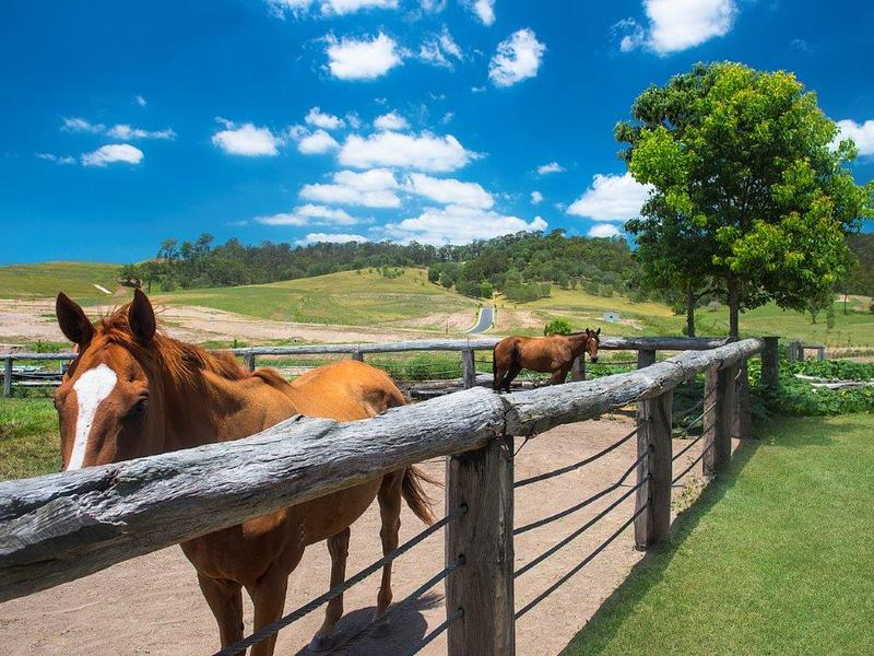 Lot 73, Montego Hills, Kingsholme, Qld 4208