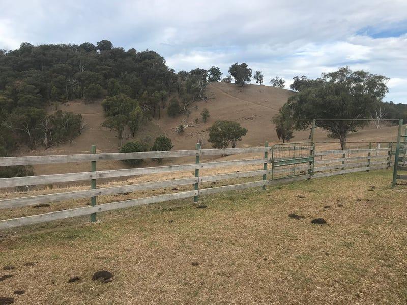 The Farm 830 Weabonga Road, Weabonga, NSW 2340