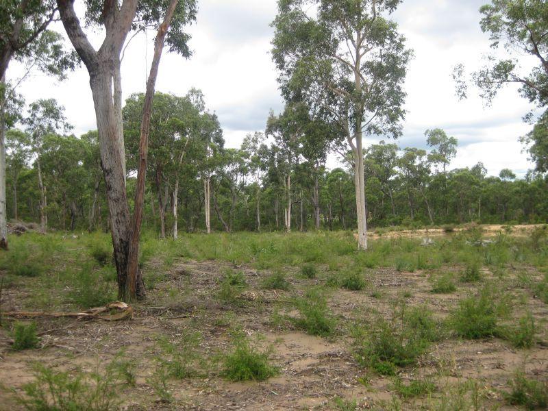 168 Ironbark Lane, Nulkaba, NSW 2325