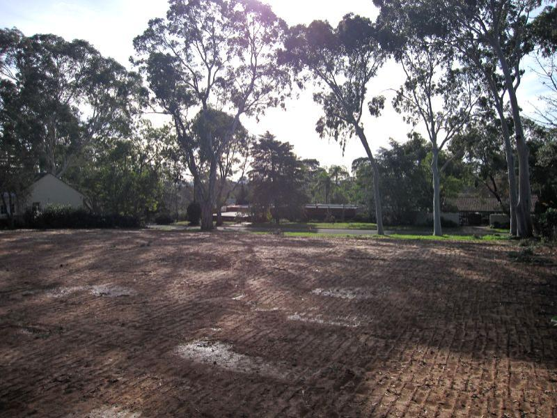 Lot 122 Pulleine Avenue, Netherby, SA 5062