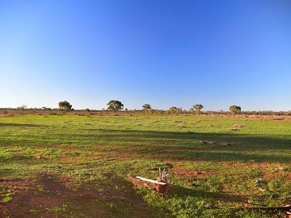 * Yanda Downs, Cobar, NSW 2835