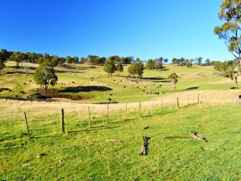 Whites Road, Ben Lomond, NSW 2365