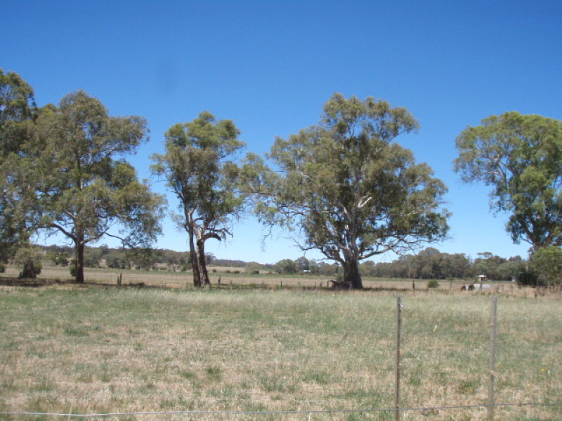 Lot 8, SEDAN ANGASTON ROAD, Keyneton, SA 5353