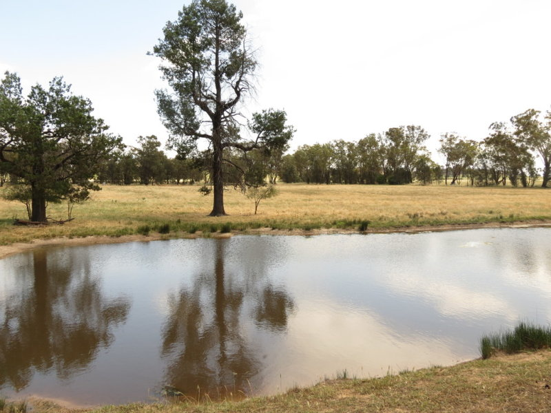 Lot 2 DP826752 Grogan Road, Stockinbingal, NSW 2725