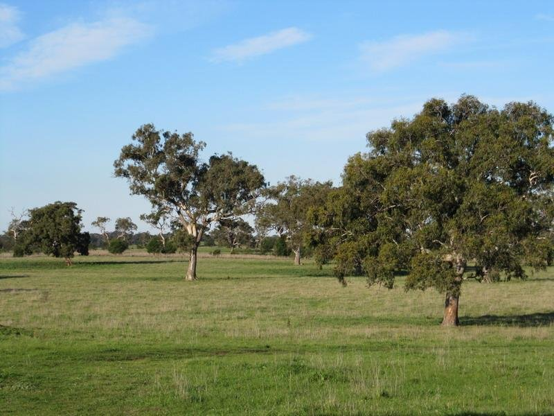 Lot 1, Tylers Road, Pearsondale, Vic 3851