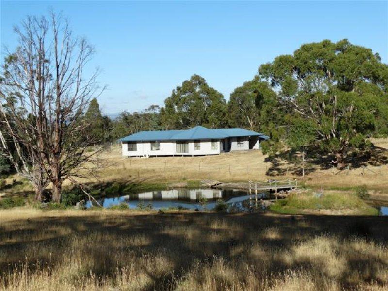 49 Richardsons Road, Black Hills, Tas 7140
