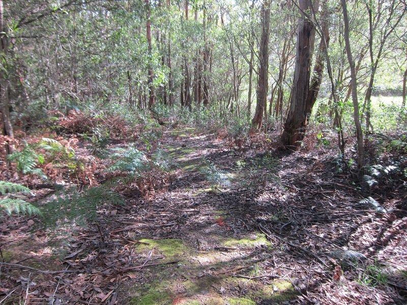 Lot 1 Missing Link Road, Wattle Grove, Tas 7109