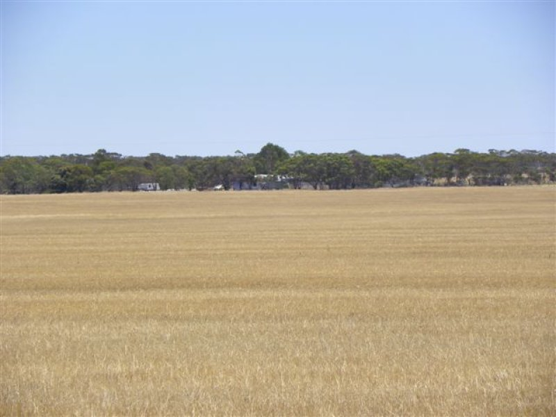 LEASE 'Carramar' Foster Road, Ongerup, WA 6336