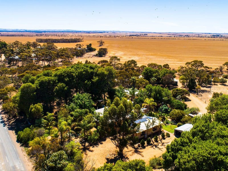 821 Pinery Road, Mallala, SA 5502