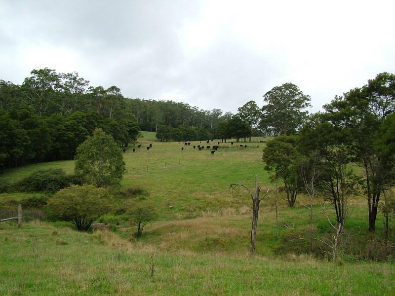 - DODDS  Road, Nowendoc, NSW 2354