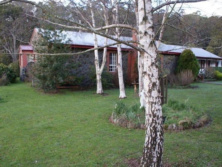 385 Liena Road, Mole Creek, Tas 7304