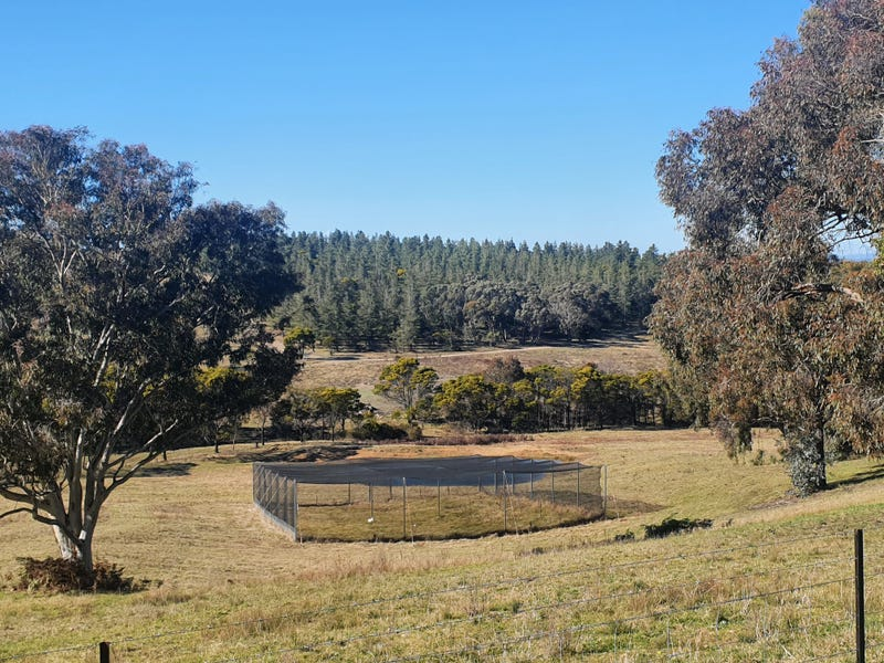 2988 Mayfield Road, Tarago, NSW 2580