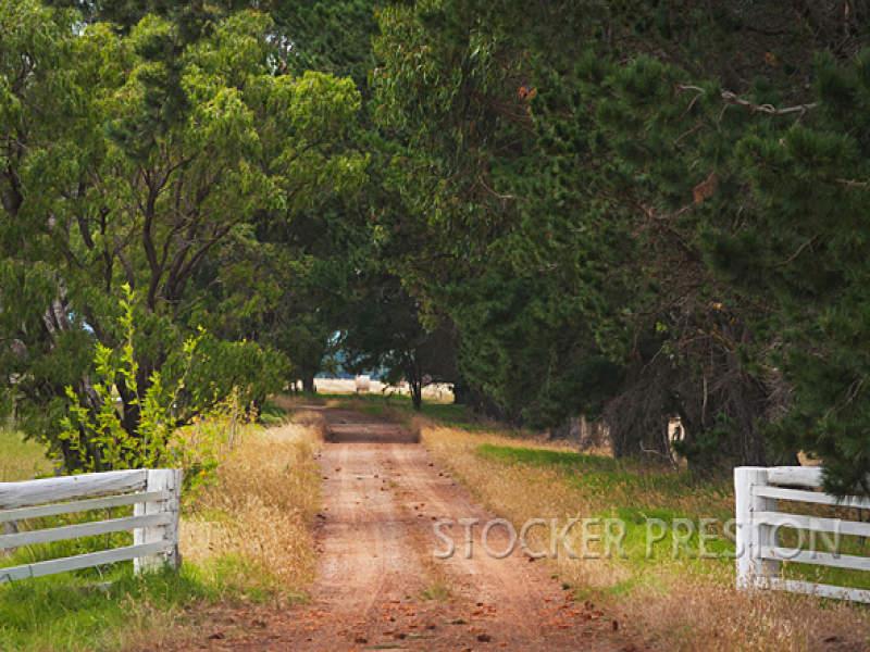 736 (Lot 111) Brockman Highway, Karridale, WA 6288