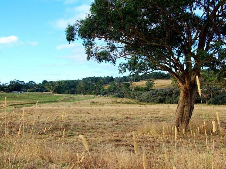 Lot 6, 209 Timboon-Curdievale Road, Timboon, Vic 3268
