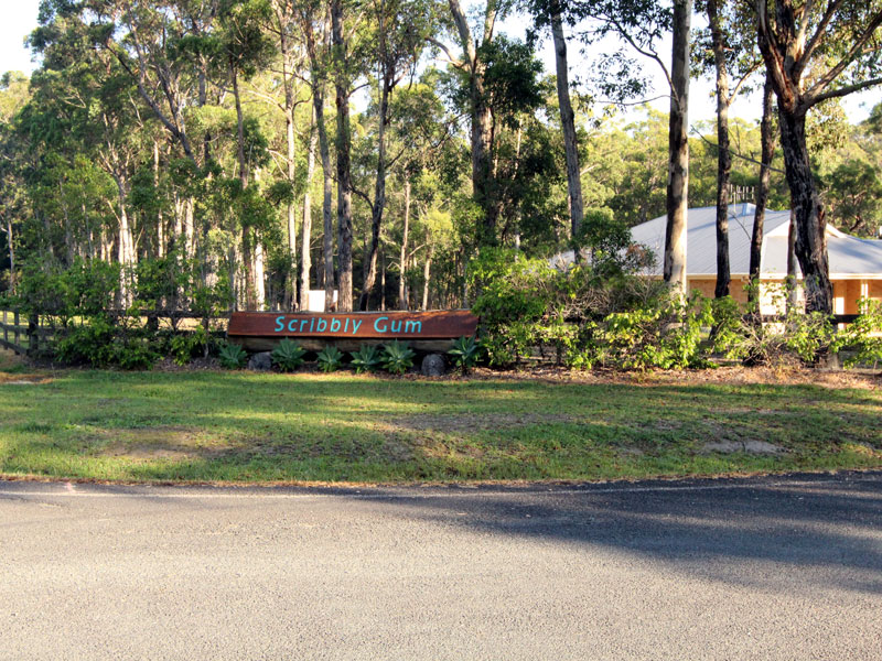 Lot 28, Osprey Place, Darawank, NSW 2428