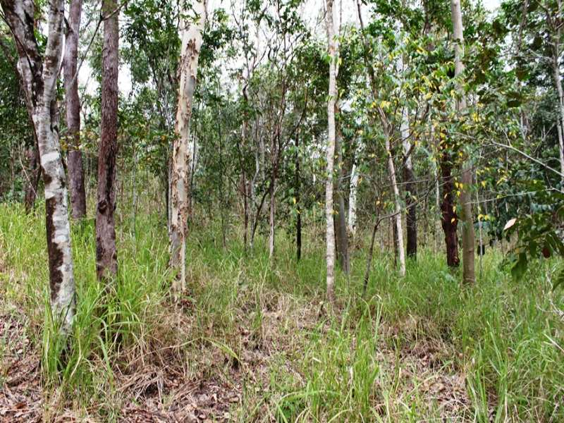 Address available on request, Kuttabul, Qld 4741