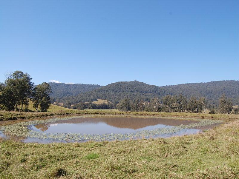 191 Shorts Road, Old Bonalbo, NSW 2469
